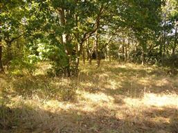 PIRIAC SUR MER - Beau terrain constructible bien expos� - La...