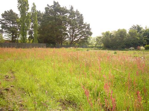 LA TURBALLE DANS VILLAGE - Beau terrain constructible à vendre dans quartier calme