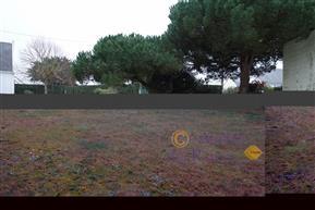 PIRIAC SUR MER PORT & CENTRE A PIED - Beau terrain c...
