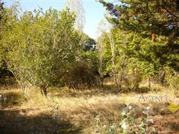 PIRIAC SUR MER - Beau terrain constructible à vendre - La pl...