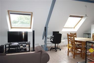 Appartement en duplex T2 bis à louer vide à l'année, dans quartier calme, au 1er étage