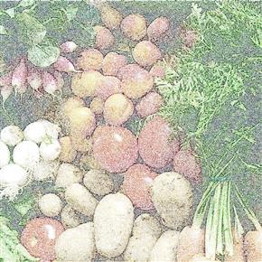 Panier Presqu'Ile et produits fermiers